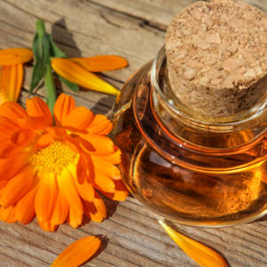 Dr. Low Dog's Calendula Sunflower Seed Oil Recipe